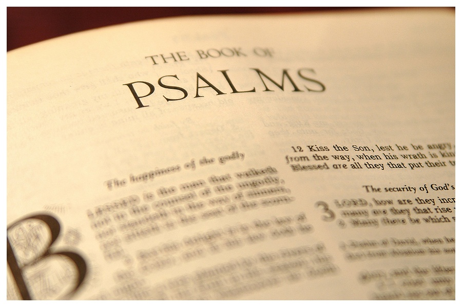 150 Psalms In Five Years 150in5 Cardiphonia